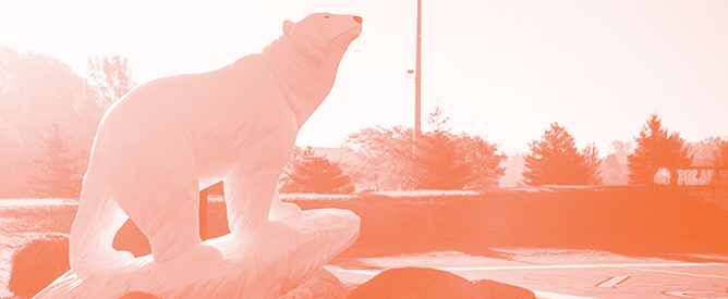 Photo of polar bear statue